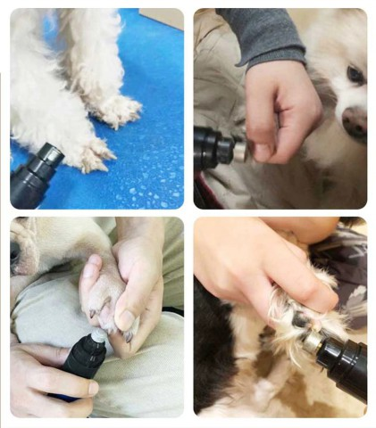 Safe Pet Nail Trimmer It's time to say goodbye to stressful nail clippers and lengthy trips at the vet. PawPal™ turns the ordeal of nail care into an easy experience. The low noise and vibration motor will reduce dog startle, making it easy for you to get the job done.